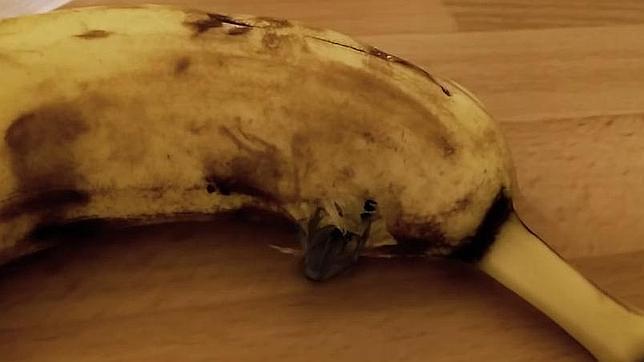 El plátano más asqueroso del mundo incendia YouTube
