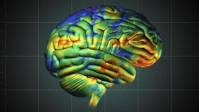 El sistema establece un mapa de colores del cerebro; en rojo el cáncer, en verde el sano