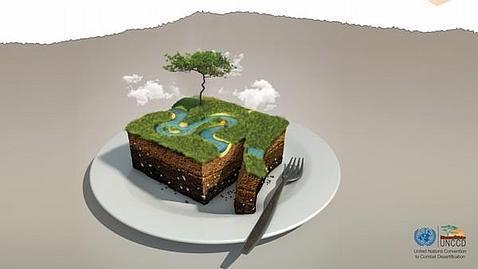 Cada 17 de junio se celebra el Día Mundial de Lucha contra la Desertificación