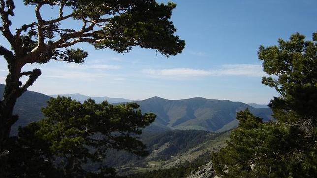 Entorno de Quintanar de la Sierra
