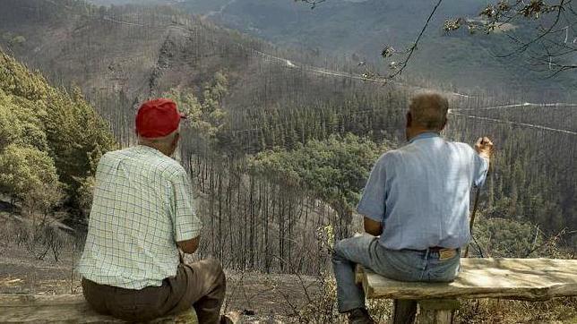 Dos vecinos observan con las llamas han devorado las tierras de Navia de Suarna (Lugo)