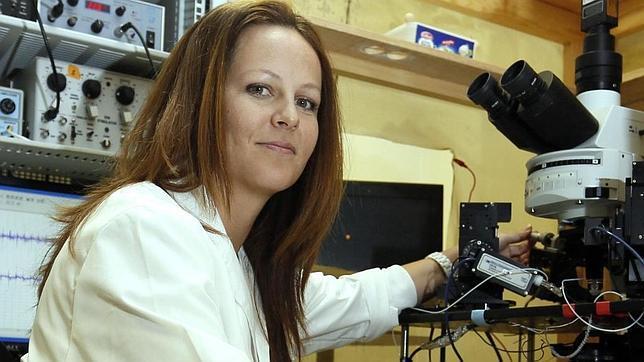 Marta Navarrete ha demostrado la importante función de los astrocitos, otro tipo de células nerviosas