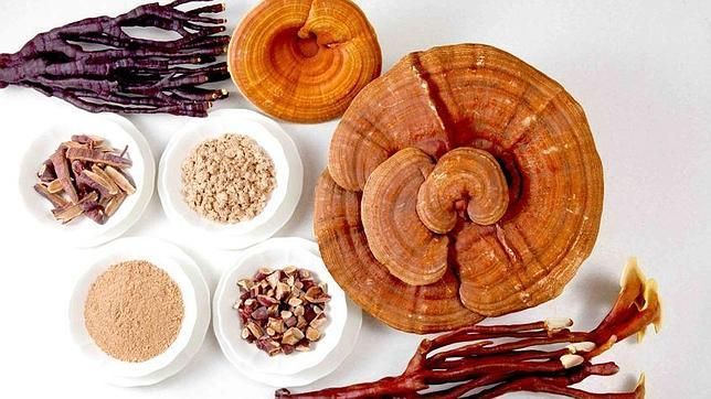 Reishi, el superalimento de las celebrities