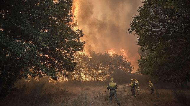Un incendio sin controlar calcina cerca de 2.000 hectáreas en la localidad de Cualedro