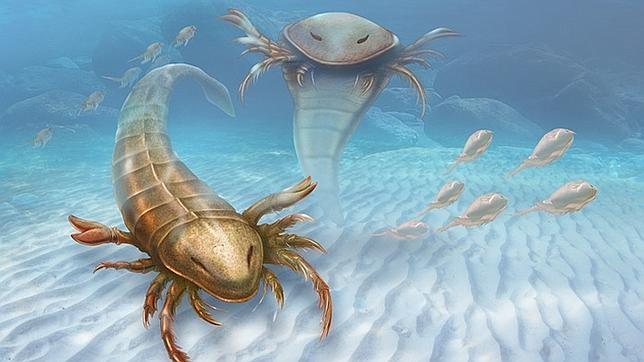 Descubierta una nueva especie de «escorpión marino» en Estados Unidos