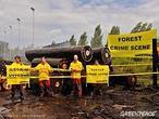 La deforestación se ralentiza a nivel mundial