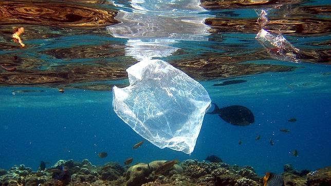 El 75 % de los residuos vertidos en el mar son de plástico