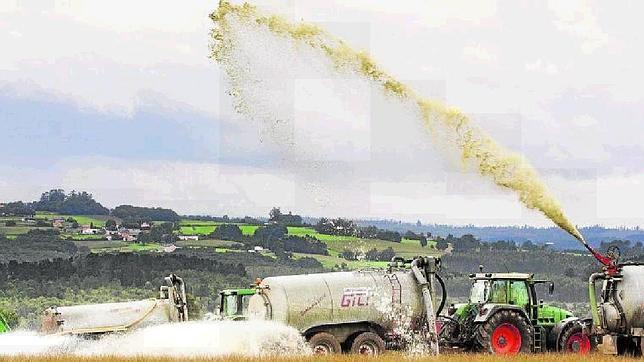 Mercadona, Vegalsa y Celta anuncian que subirán dos céntimos el litro de la leche