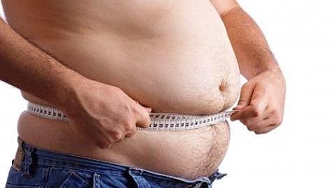 Revelan el mecanismo neural responsable de la descomposición de las grasas