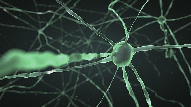 Desórdenes cerebrales (algunos) ¿entrenamiento cerebral o medicación?