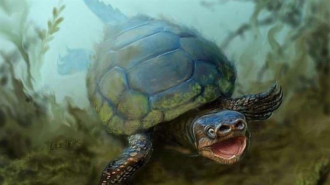 Descubren una extraña especie extinta de tortuga con nariz de cerdo