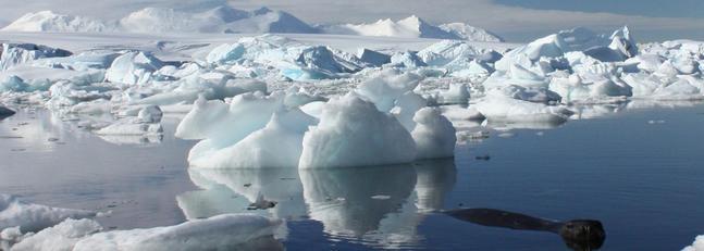Un estudio revela que el deshielo comienza a hacer mella en Antártida Oriental
