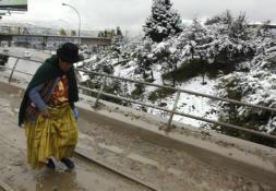 Los cocaleros financian con 20 toneladas de coca la campaña electoral de Evo Morales
