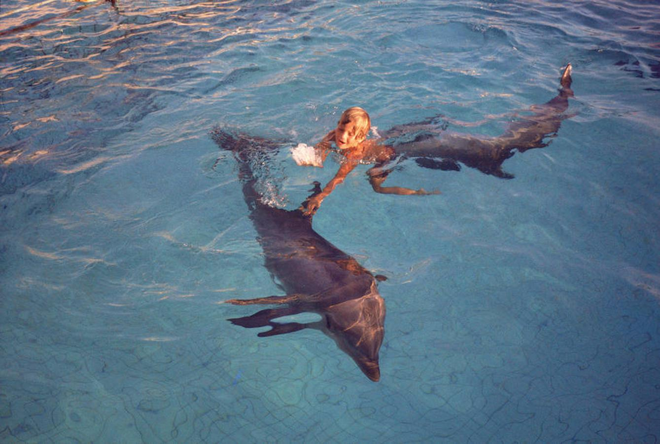 Desde que en 1973 comenzara a veranear en Mallorca, Don Felipe ha dejado innumerables instantáneas para el recuerdo. En este caso, en 1974, en un zoológico mallorquín jugando con los delfines