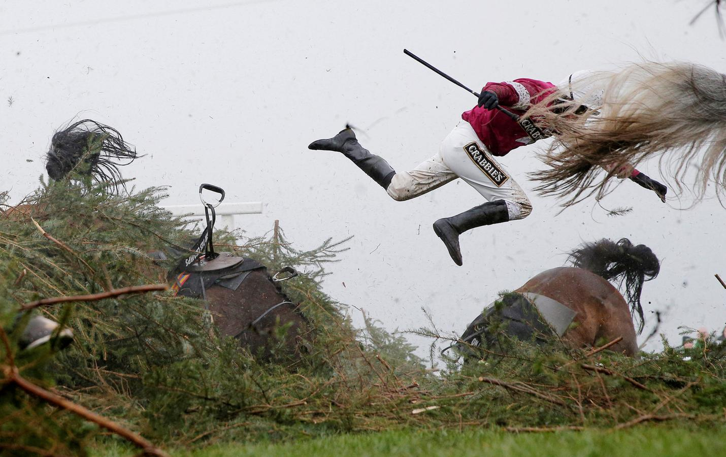 1er premio individual. «Grand National Steeplechase», de Tom Jenkins (The Guardian)
