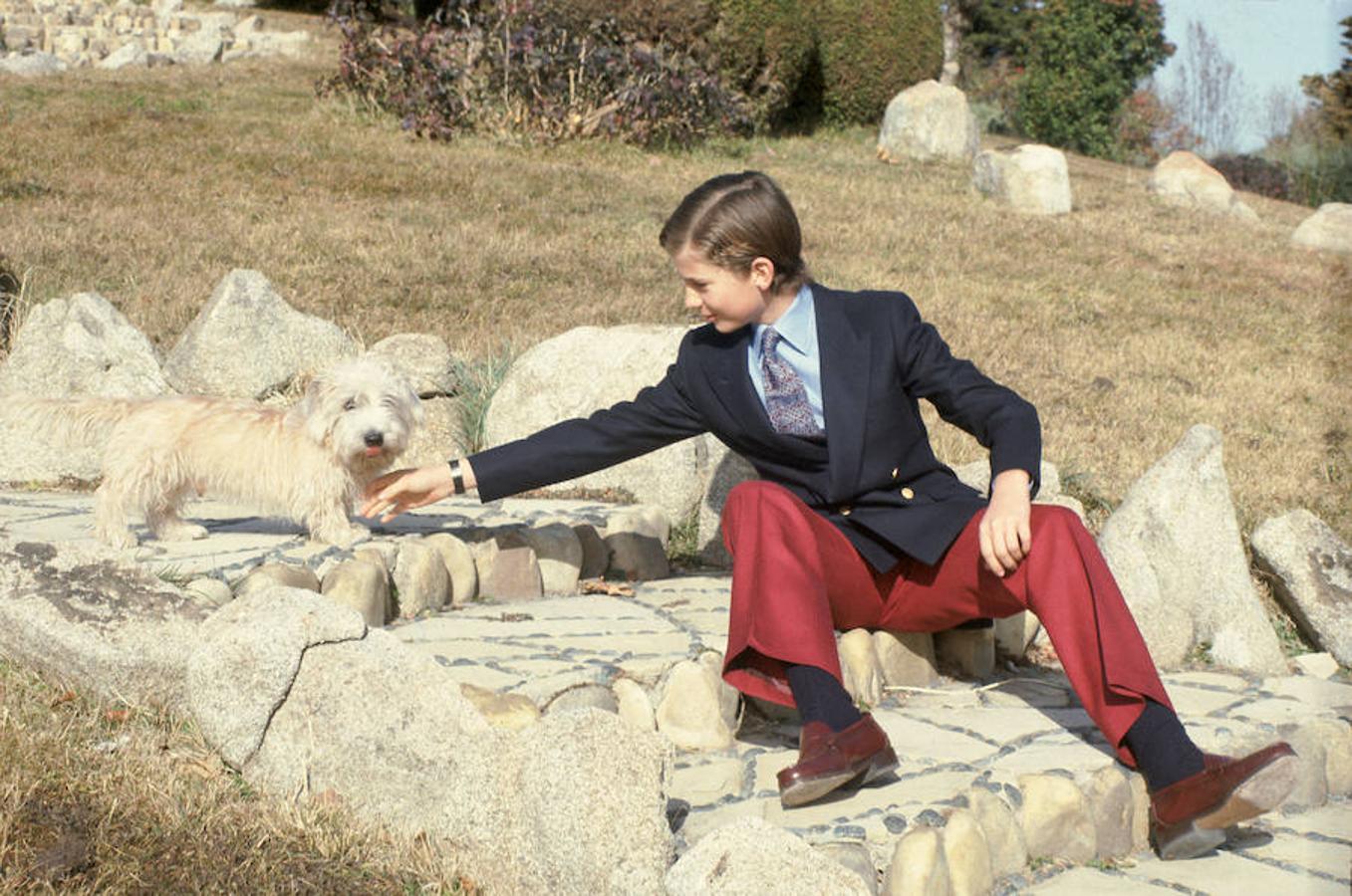 El Rey Felipe VI ha tenido numerosas mascotas a lo largo de su vida: «Pushkin», un perro de raza schnauzer, «Pinqui», «Balú», y un descendiente de «Pushkin» han sido algunas de ellas