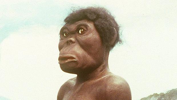 Modelo de Lucy la australopithecus, encontrada en Etiopía en 1974