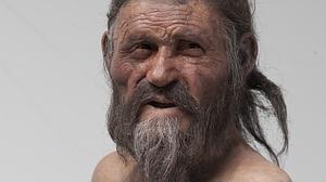 Sorpresa en las tripas de Ötzi, el «hombre de hielo»