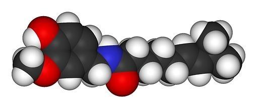 La capsaicina, la sustancia que provoca el «sabor» picante. Tiene un valor de casi 16 millones en la escala de Scoville