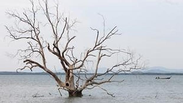 El nivel del mar subió más rápido en el siglo XX que en los 3.000 años anteriores