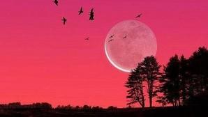 Prepárate para ver una miniluna en el cielo