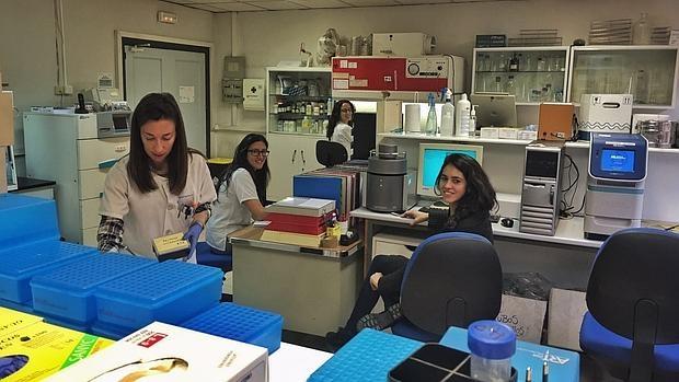 Científicas trabajan en el laboratorio de Epistem España, en el Hospital Carlos III
