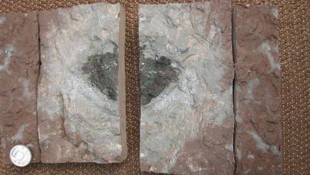 Hallan en una mina de Suecia el primer meteorito «extinto»
