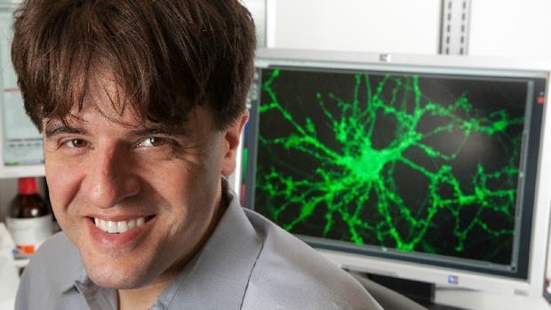 Hemeroteca: Karl Deisseroth: «Puede que nunca logremos entender el cerebro» | Autor del artículo: Finanzas.com
