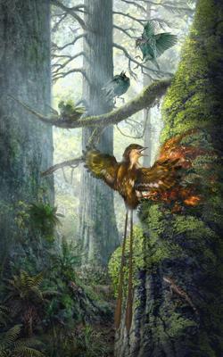 Ilustración de un ejemplar con el ala atrapada en la resina del árbol
