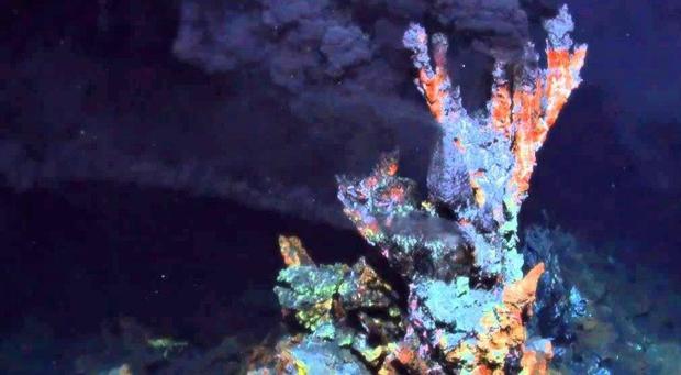 """Alrededor de una chimenea hidrotermal como esta pudo haber surgido LUCA, el """"padre"""" de todos los seres vivos que hoy pueblan la Tierra."""