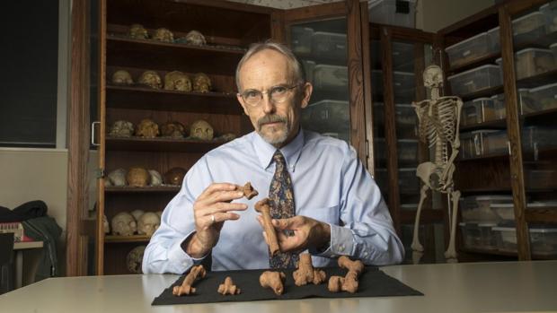 John Kappelman, con recreaciones 3D del esqueleto de «Lucy»