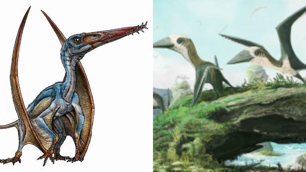 «Allkauren koi» a la izquierda, y un pequeño pterosaurio del grupo de la familia Azhdarchidae, a la derecha