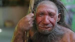 Los seres humanos tenemos un pequeño porcentaje del genoma neandertal