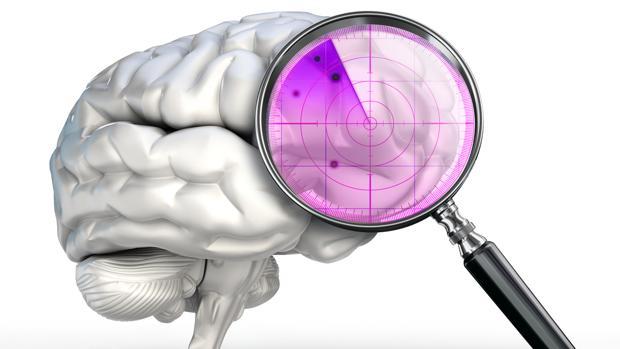 Ultimos Avances en Ciencia y Salud - Página 40 Cerebrovision-kyNE--620x349@abc