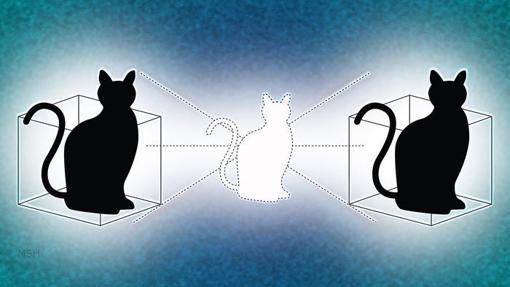 El gato de Schrödinger, en dos cajas al mismo tiempo