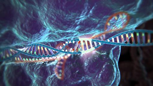 Representación de la técnica de edición de ADN CRISPR