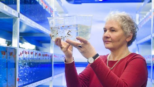 Las diecisiete científicas premiadas con un Nobel