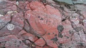 Desentierran en Canadá el fósil más antiguo de la Tierra