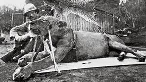 El teniente coronel John Patterson posa junto a uno de los leones devoradores de hombres que cazó en 1898