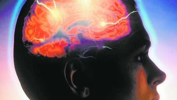Sinestesia: cuando las palabras huelen y los colores se oyen