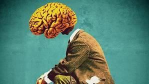 ¿Por qué el cerebro humano está arrugado?
