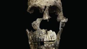 El misterioso homínido que vivió junto a los primeros humanos en África