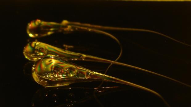 Gotas del Príncipe Rupert