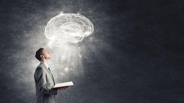 El cerebro humano es sorprendentemente flexible y la lectura puede modificarlo