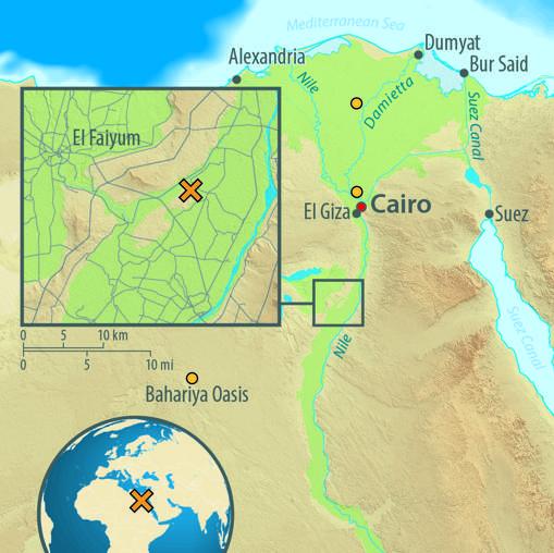 Posición del yacimiento de Abusir el-Meleq. En naranja, origen del material genético de las poblaciones modernas