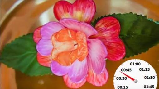 LO ULTIMO EN AVANCES E INVENTOS - Página 6 Florartificial-kSEC--510x287@abc