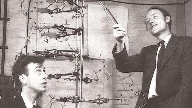 Francis Crick (derecha) junto a James D. Watson, codescubridores de la estructura y función del ADN