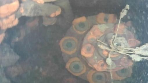 Parte inferior de una barra de control en el reactor 3