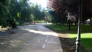 Un grupo de homosexuales, agredido en un parque mientras practicaba «cruising»