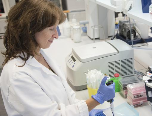 Maite Mendioroz, en el laboratorio que dirige